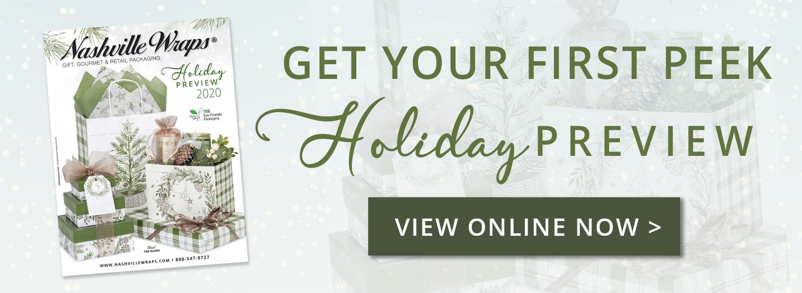 GET A SNEAK PEEK OF THE HOLIDAY PREVIEW  - VIEW NOW