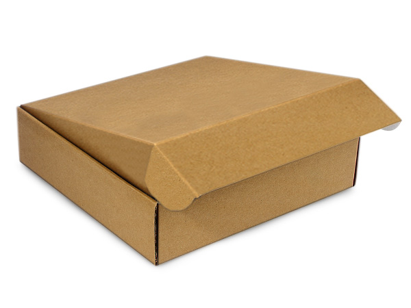 Kraft Decorative Mailer Shipping Boxes