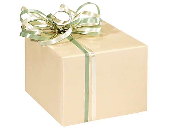 "Ivory Gloss 24""x417' Roll Gift Wrap"