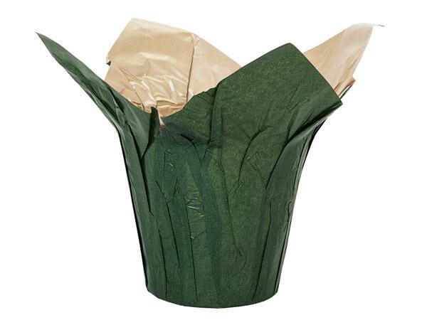 """Dark Moss and Natural Kraft Pot Cover, 6"""" diameter, 25 Pack"""