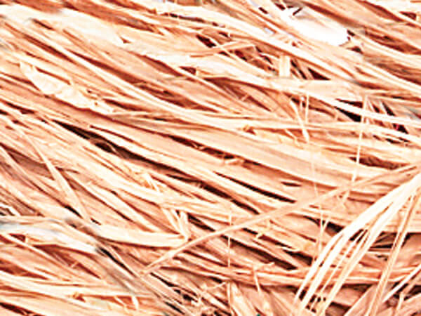 Natural Fiber Raffia Fiber Filler