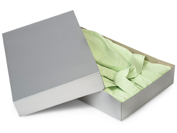 "Silver Gloss Apparel 19x12x3"" 100% Recycled Gloss Tint - 2 Pc Box"