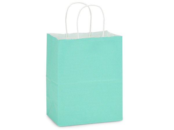 Cub Aqua White Kraft Shopping Bags 25 Pk 8x4-3/4x10-1/4""