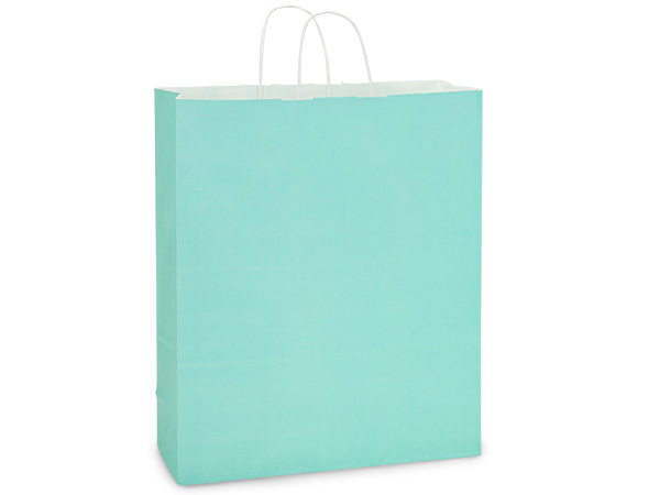 Queen Aqua White Kraft Shopping Bag 25 Pk 16x6x19""