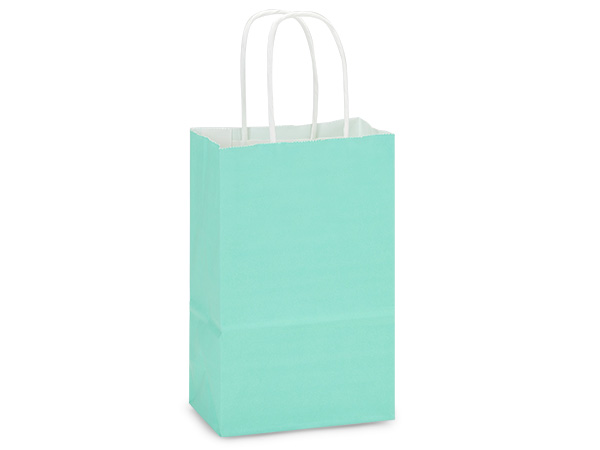 Rose Aqua White Kraft Shopping Bags 25 Pk 5-1/2x3-1/4x8-3/8""
