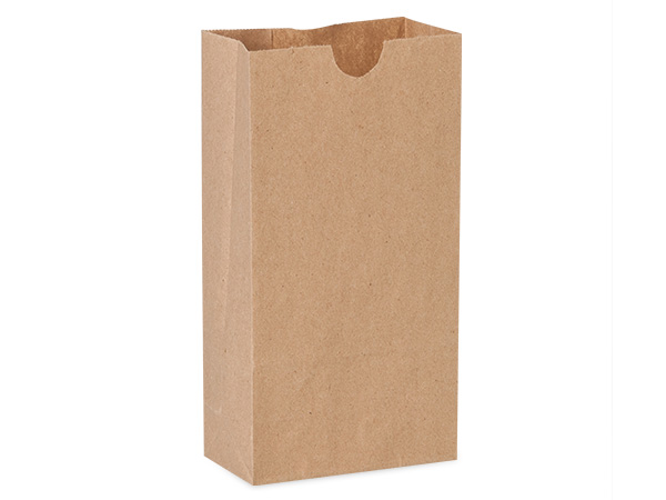 "Recycled Brown Kraft Gift Sack, 2 lb Bag 4.25x2.25x8"", 50 Pack"
