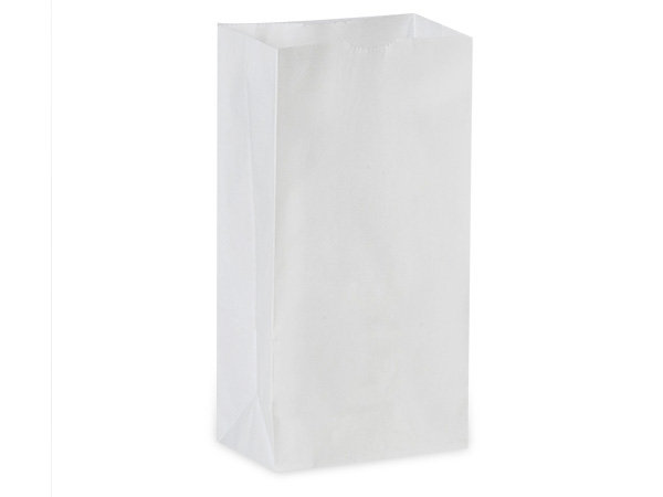 White Paper Bags Lunch Sacks