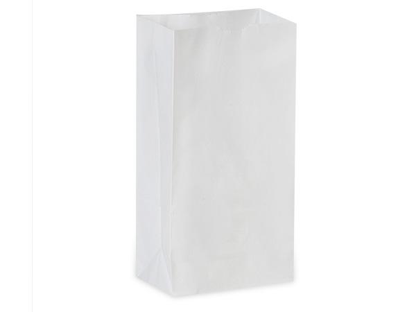 """White Kraft Gift Sack, 4 lb Bag 5x3x9.5"""", 50 Pack"""