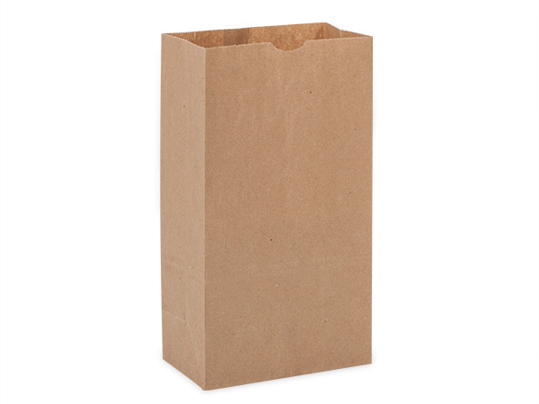"50 Pack 6 lb Recycled Kraft Gift Sacks 6x3-5/8""x11-1/16"""