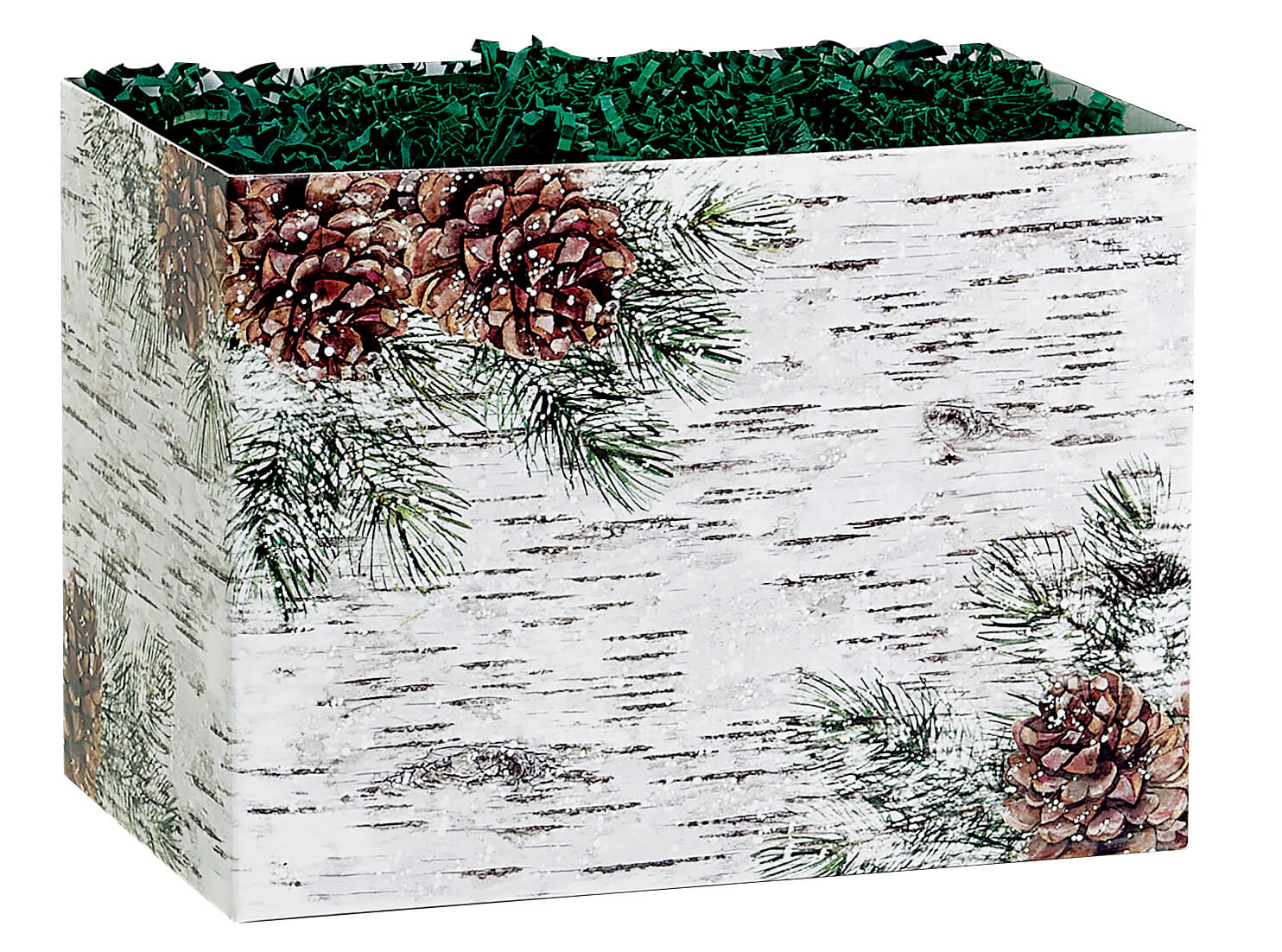 """Birch and Pine Basket Box, Large 10.25x6x7.5"""", 6 Pack"""