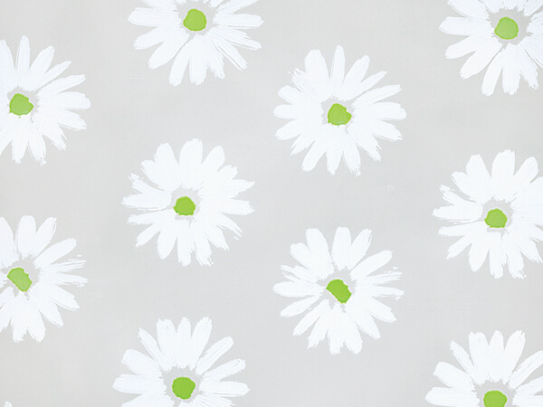"Coming Up Daisies White Cello Roll, 30""x100'"