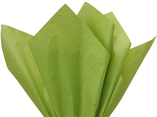 "Oasis Green Color Tissue Paper, 20x30"", 24 Soft Fold Sheets"