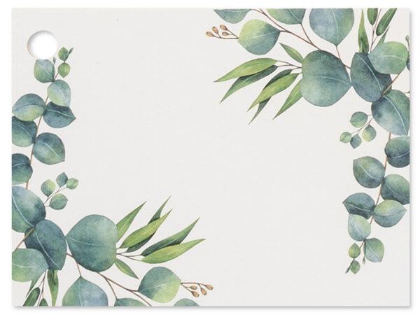 """Eucalyptus Theme Gift Cards 3-3/4x2-3/4"""""""