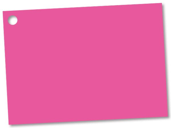 """Fuchsia Theme Gift Cards 3-3/4x2-3/4"""""""