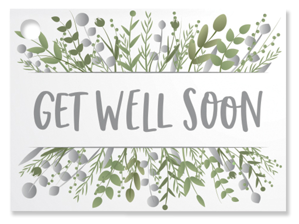 """Get Well Greenery Theme Gift Cards, 3.75x2.75"""", 6 Pack"""