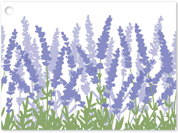 Lavender Field Gift Cards