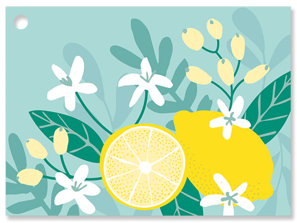 """Lemon Blooms Theme Gift Cards 3.75x2.75"""", 6 Pack"""