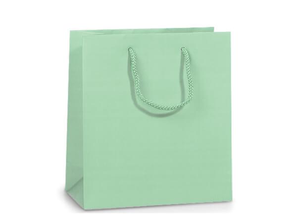 """Aqua Matte Gift Bags, Jewel 6.5x3.5x6.5"""", 100 Pack"""