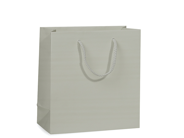 """Silver Matte Gift Bags, Jewel 6.5x3.5x6.5"""", 10 Pack"""