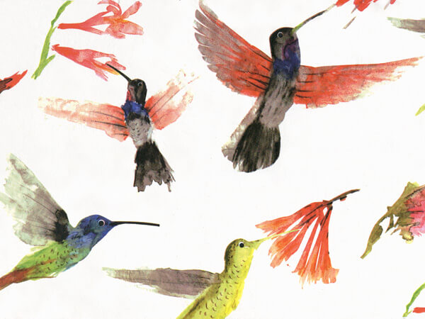 """Hummingbirds Tissue Paper 240~20""""x30"""" Sheets Recycled"""