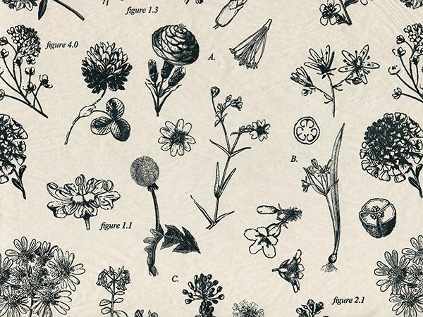 "Botanicals Tissue Paper 20x30"", Bulk 120 Sheet Pack"