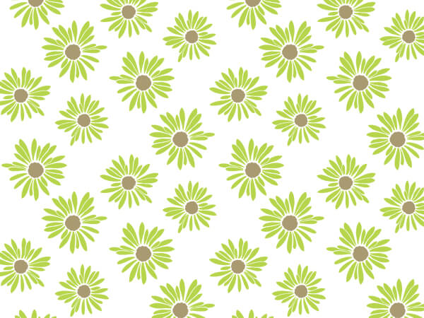 "Painted Daisies Tissue Paper, 20x30"", Bulk 240 Sheet Pack"