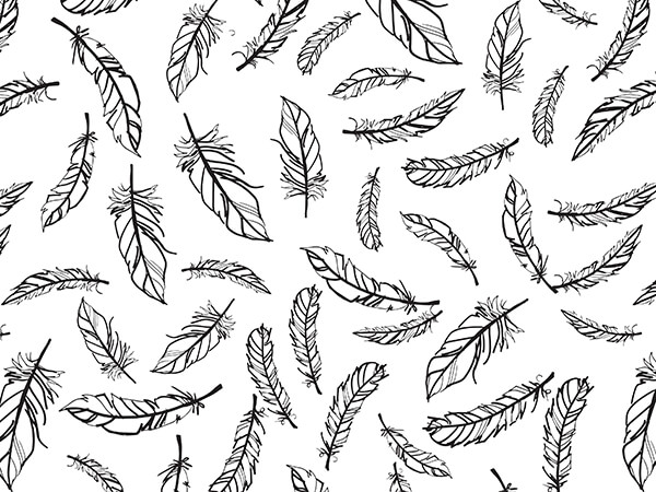"""Feathers Tissue Paper, 20x30"""", 12 Soft Fold Sheets"""