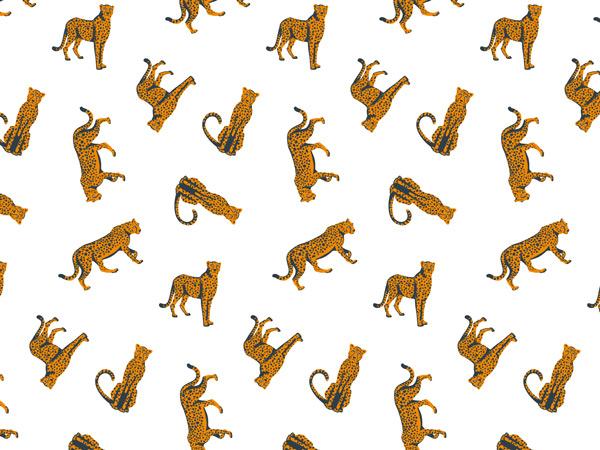 "Cheetah Tissue Paper 20x30"", Bulk 240 Sheet Pack"