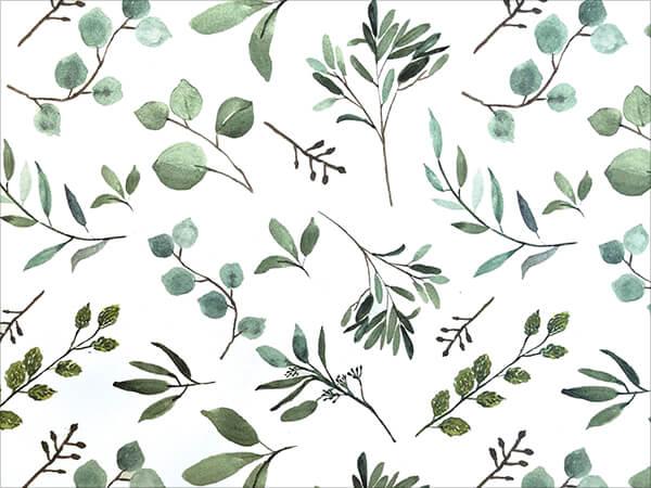 """Eucalyptus Tissue Paper 20x30"""", Bulk 100 Sheet Pack"""