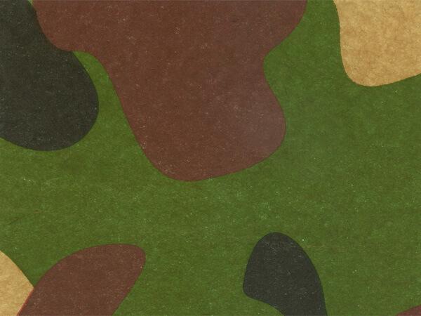 "Camo Tissue Paper, 20x30"", 12 Soft Fold Sheets"
