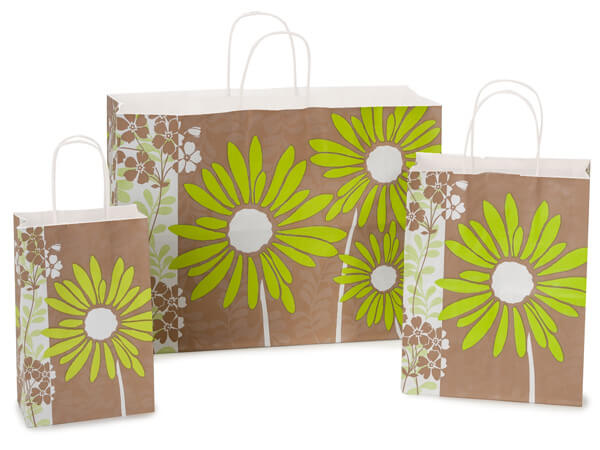 Painted Daisies White Kraft 125 Pk Paper Bag Assortment