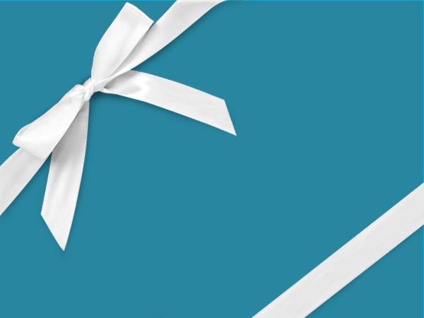 """Cabana Velvet  24"""" x 417' Half Ream Roll Gift Wrap"""