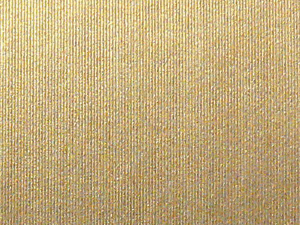 "Embossed Brushed Pale Gold 24""x417' Half Ream Gift Wrap (Foil)"