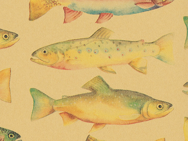 "RainBow Trout  30"" x 417' Half Ream Roll Gift Wrap"