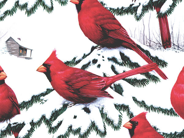 """Cardinals  24"""" x 833' Full Ream Roll Gift Wrap"""