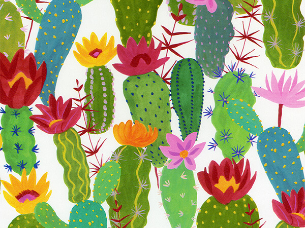 "Cactus  24"" x 833' Full Ream Roll Gift Wrap"