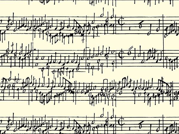 "Black Concerto 26"" x 417' Half Ream Roll Gift Wrap"