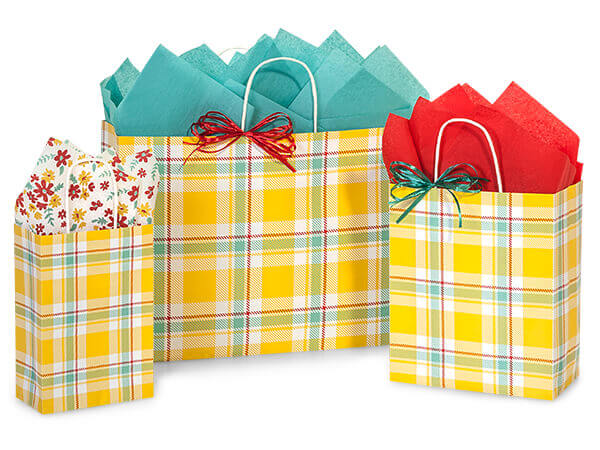 Sunshine Plaid Paper Shopping Bags, Small 25 Pack Assortment