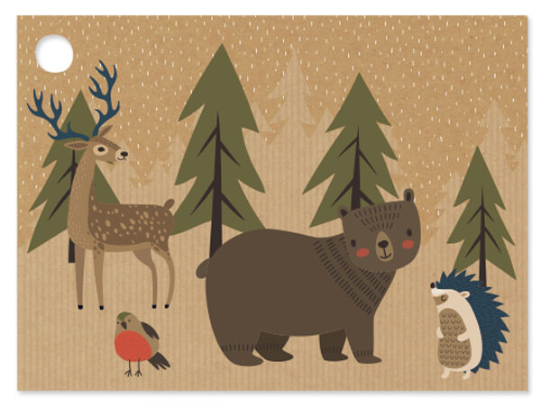 Woodland Creatures Theme Gift Cards, 3.75x2.75, 6 Pack
