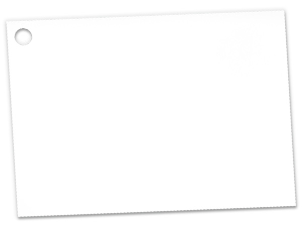 Solid White Theme Gift Cards 3-3/4x2-3/4""