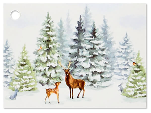 """Wintry Woods Theme Gift Cards 3.75x2.75"""", 6 Pack"""