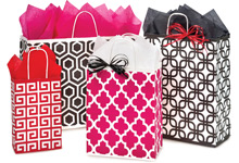 Geo Graphics Paper Shopping Bags