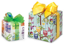 Special Purchase Discount Gift Wrap