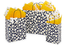 Nashville Wraps Chevron Stripe Shopping Bags