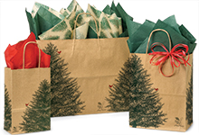 Nashville Wraps Recycled Kraft Paper Shopping Bags